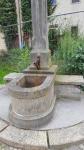 Stadtführer zeigt Röhrwasserbrunnen-lutherhof